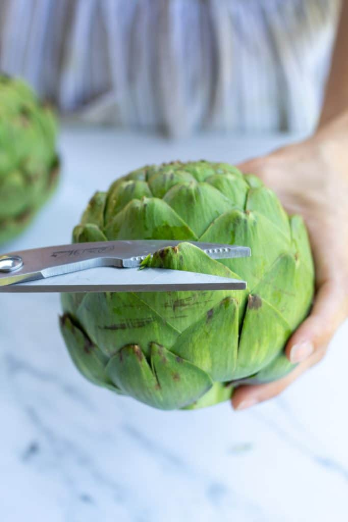 snipping the leaves of an artichoke with scissors